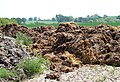 Manure pile in Much Wenlock, Shropshire, England.jpg