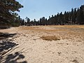 Margin of Hidden Valley Lake (39429285064).jpg
