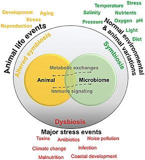 Marine microbiome