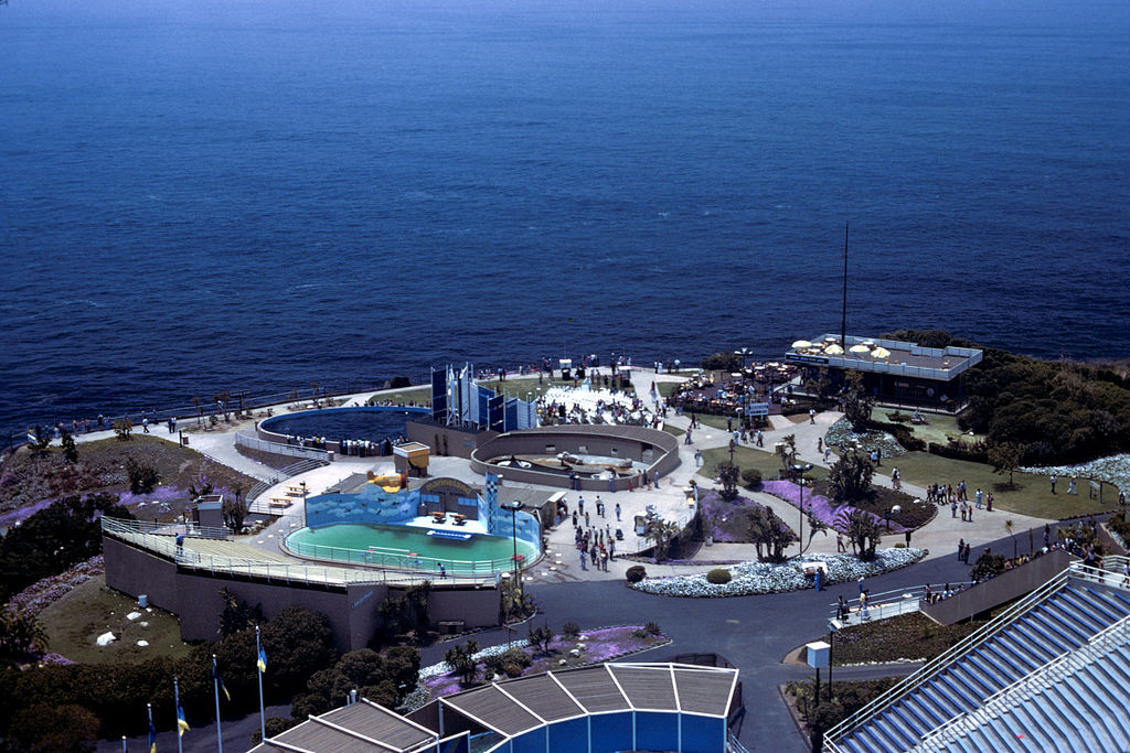 File:Marineland of the Pacific.jpg - Wikipedia