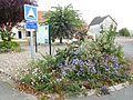 Massif de fleurs, Saint-Martin-sur-Nohain.jpg