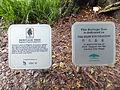 Memorial Boards of Hertage Tembusu Tree 20130210.JPG