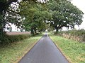 Mere Lane East of South Dalton - geograph.org.uk - 1519254.jpg
