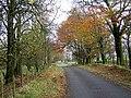 Minor Road Near Skeoch Farm - geograph.org.uk - 281955.jpg