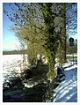 Minus 10 Grad Celsius Glottertal Germany - Magic Rhine Valley Photography - panoramio (7).jpg