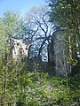 Montenoison-ruines.jpg
