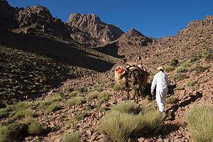 Jbel Saghro - Mountain trekking in the Jbel Saghro.