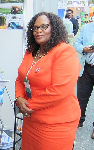 Nomvula Mokonyane - Image: Ms. Nomvula Mokonyane, Minister of Water and Sanitation, South Africa (33142724886) (cropped)