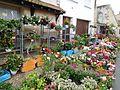 Mussidan, marché, fleurs.jpg