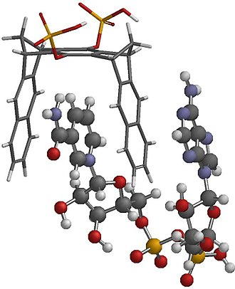 Molecular tweezers - Image: NAD+clip