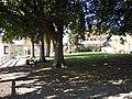 ND Baumbestand Museum Überlingen.jpg