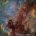 NGC 7000 & IC 5070 (29548268756).jpg