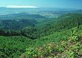 NRCSOR00066 - Oregon (5823)(NRCS Photo Gallery).jpg