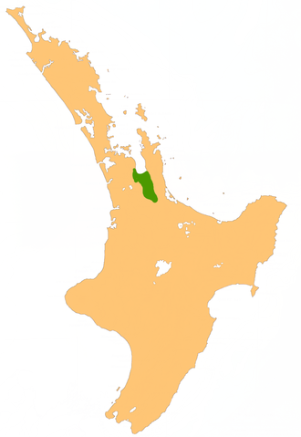 Hauraki Plains - Location of the Hauraki Plains.