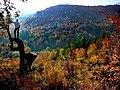 Nad farebnou paletou - panoramio.jpg