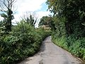 Narrow lane, near Dunchideock House - geograph.org.uk - 1429852.jpg