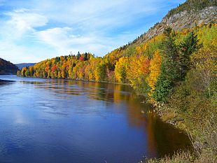 "The <a href=""http://search.lycos.com/web/?_z=0&q=%22Humber%20River%20%28Newfoundland%29%22"">Humber River</a> on the Newfoundland island on an October 2007 autumn day"