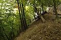 Nature reserve Zvolská homole in autumn 2014 (11).JPG