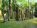Neudenau-judenfriedhof8.jpg