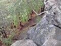 Nevyanskiy r-n, Sverdlovskaya oblast', Russia - panoramio (132).jpg