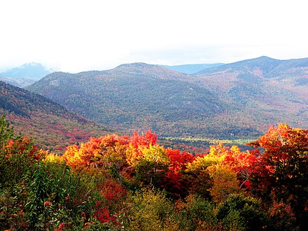 Autumn leaves on many hardwood trees in New Hampshire turn colors, attracting many tourists. New hampshire in autumn.jpg