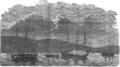 Norsk eskadre på Hortens havn 1854.png