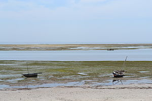Nyali Beach from the Reef Hotel during low tide in Mombasa, Kenya 10.jpg