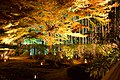 Ohara 2008-11-25 night (3261197185).jpg