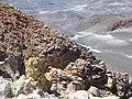 Ojos del Salado summit - sulfur (4321049466).jpg
