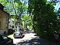 Oksa-Street-Tallinn-July-2019.jpg