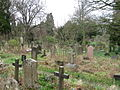 Old Cemetery, Southampton - geograph.org.uk - 1779225.jpg