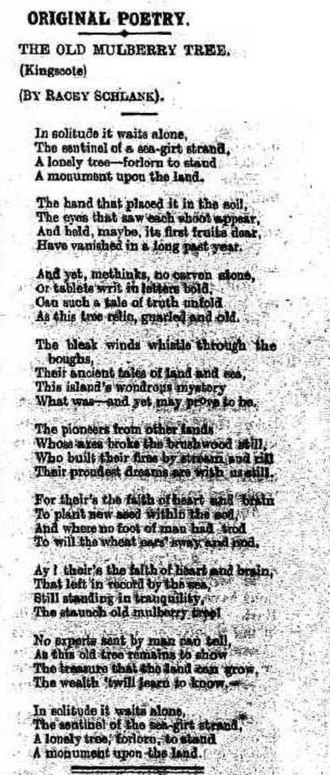 Old Mulberry Tree at Reeves Point - Poem about an historic mulberry tree at Reeves Point, Kangaroo Island