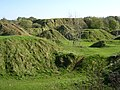 Old quarry spoil heaps at Ham Hill Country Park - geograph.org.uk - 71054.jpg