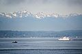 Olympic Mountains-1.jpg