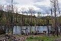 Orb River - Roquebrun 01.jpg