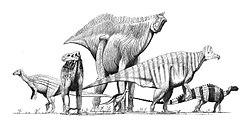 meaning of ornithopod