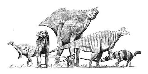 恐竜 下位分類