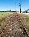 Overgrown Lysekil line 1.jpg