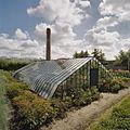 Overzicht van ijzeren druivenserre (kniekas), met schoorsteen op de achtergrond - Honselersdijk - 20405436 - RCE.jpg