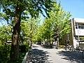 P1020831.JPG - panoramio.jpg