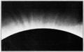 PSM V57 D318 North polar coronal streamers.png