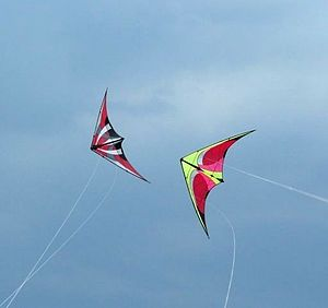 Sport kite - Two dual line sport kites flying in formation.