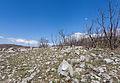 Paisaje junto al lago de Slansko, Montenegro, 2014-04-14, DD 02.JPG