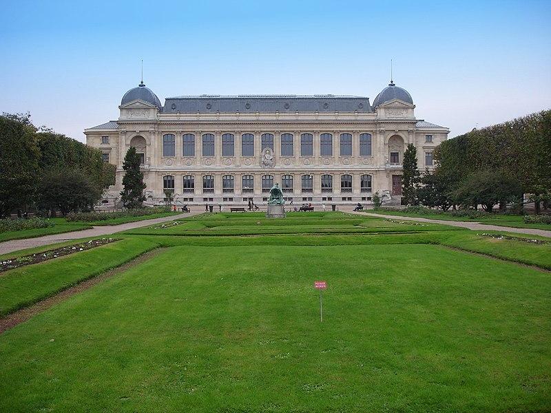 Ficheiro:Paris - grande galerie de l evolution - 2005-11-12.jpg