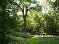 Park w stylu angielskim w Ostromecku.JPG
