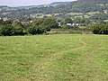 Pasture land on the edge of Honiton - geograph.org.uk - 46361.jpg