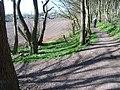 Path Junction - geograph.org.uk - 763504.jpg