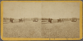 Paving of Lenox Ave. no. of Central Park, from Robert N. Dennis collection of stereoscopic views.png