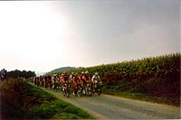 Description de l'image  Peloton Grand Isbergues 2006.jpg.