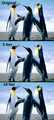 Penguins box blur.png